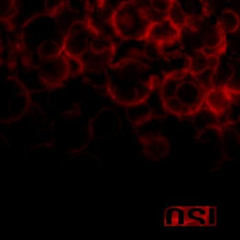 OSI - Blood - 2009 (2CD Limited Edition)