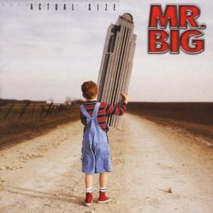 Mr. Big - Actual Size (2001)