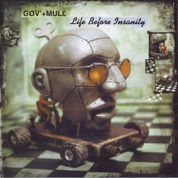 Gov'T Mule - Life Before Insanity (2000)