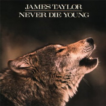James Taylor - Never Die Young (Columbia Mint Original US Pressing LP VinylRip 24/96) 1988