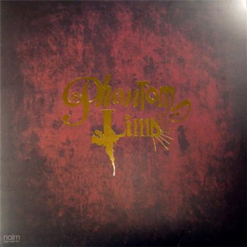 Phantom Limb - Phantom Limb (Naim Records LP VinylRip 24/96) 2008