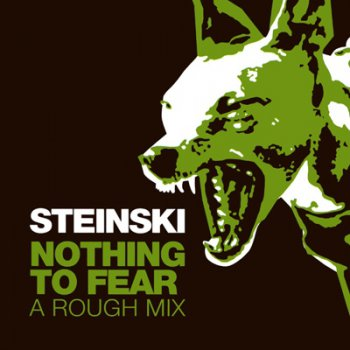 Steinski - Nothing To Fear - A Rough Mix 2003