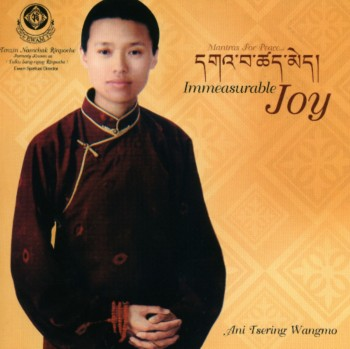 Ani Tsering Wangmo - Immeasurable Joy (2006)