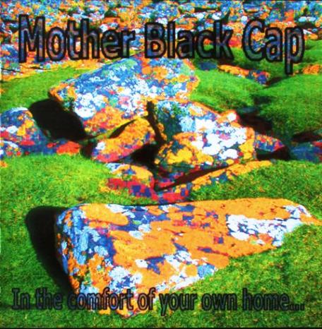 Mother Black Cap - In The Comfort Of Your Own Home (2006)