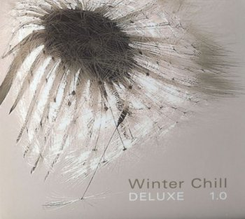 VA - Winter Chill Deluxe 1.0 (2010) Lossless