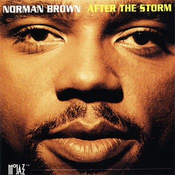 Norman Brown - After The Storm (1994)