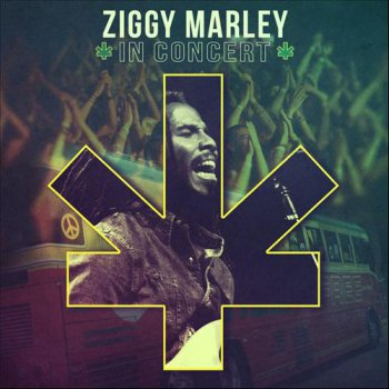 Ziggy Marley - In Concert (2013)