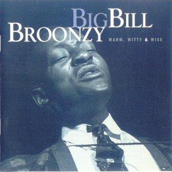Big Bill Broonzy - Warm, Witty & Wise (1998)