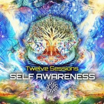 Twelve Sessions - Self Awareness (2013)
