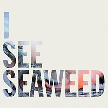 The Drones - I See Seaweed 2013