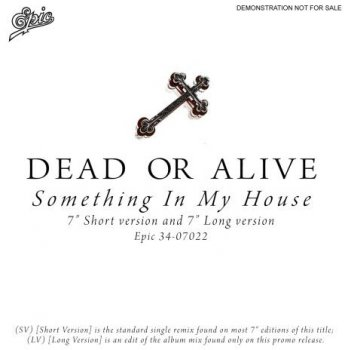 Dead Or Alive - Something In My House (Promo) (Vinyl, 7'') 1986
