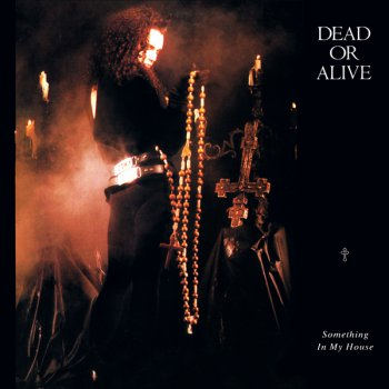 Dead Or Alive - Something In My House (Vinyl, 12'') 1986