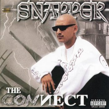 Snapper-The Connect 2000