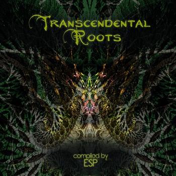 VA - Transcendental Roots (2015)