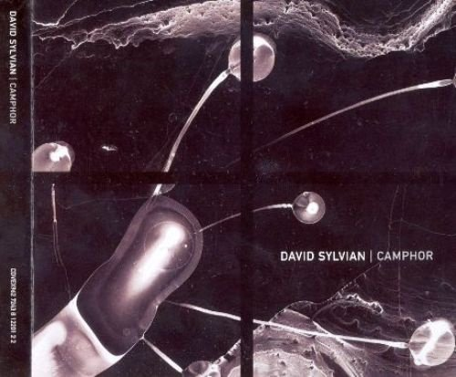 David Sylvian - Camphor (2002) [2CD Limited Edit.]