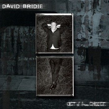 David Bridie - Act of Free Choice [SACD] (2000)