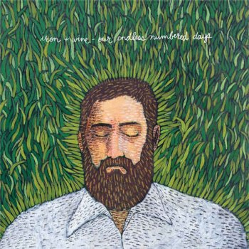 Iron & Wine - Our Endless Numbered Days (2004)