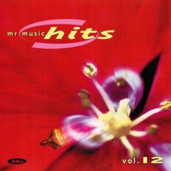 VA - Mr Music Hits 1999 Volume 1-12 (1999)