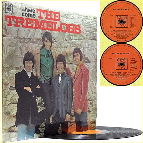 The Tremeloes - Here Come The Tremeloes (1967) (Vinyl)