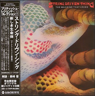 String Driven Thing - The Machine That Cried (1973)