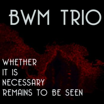 BWM Trio - Whether It Is Necessary Remains to Be Seen (2013)