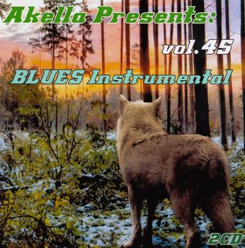 VA - Akella Presents: Blues Instrumental - Vol.45 (2013)