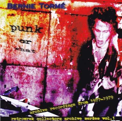 Bernie Torme - Punk Or What (1998) [2CD Rec. From 1976-1978 Unreleased]