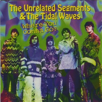 The Unrelated Segments & The Tidal Waves - Where You Gonna Go (1966-70) (1998)