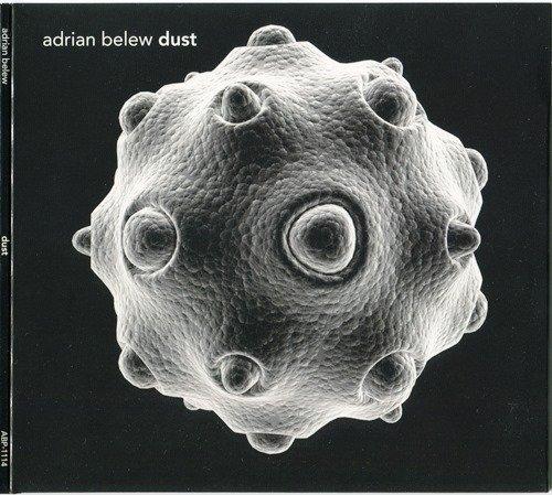 Adrian Belew - Dust (2014)