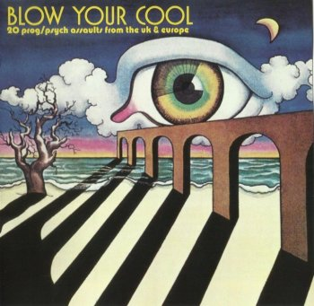 V.A. - Blow Your Cool 20 Prog/Psych Assaults (1969-74)[2007]