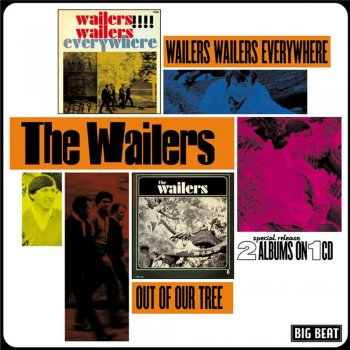The Wailers - Wailers Wailers Everywhere/Out Of Our Tree (1964-65) (2003)