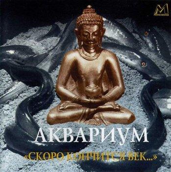 Аквариум - Скоро кончится век... (1996)