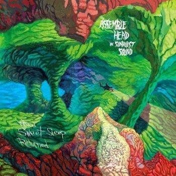 Assemble Head In Sunburst Sound - When Sweet Sleep Returned ( 2009)